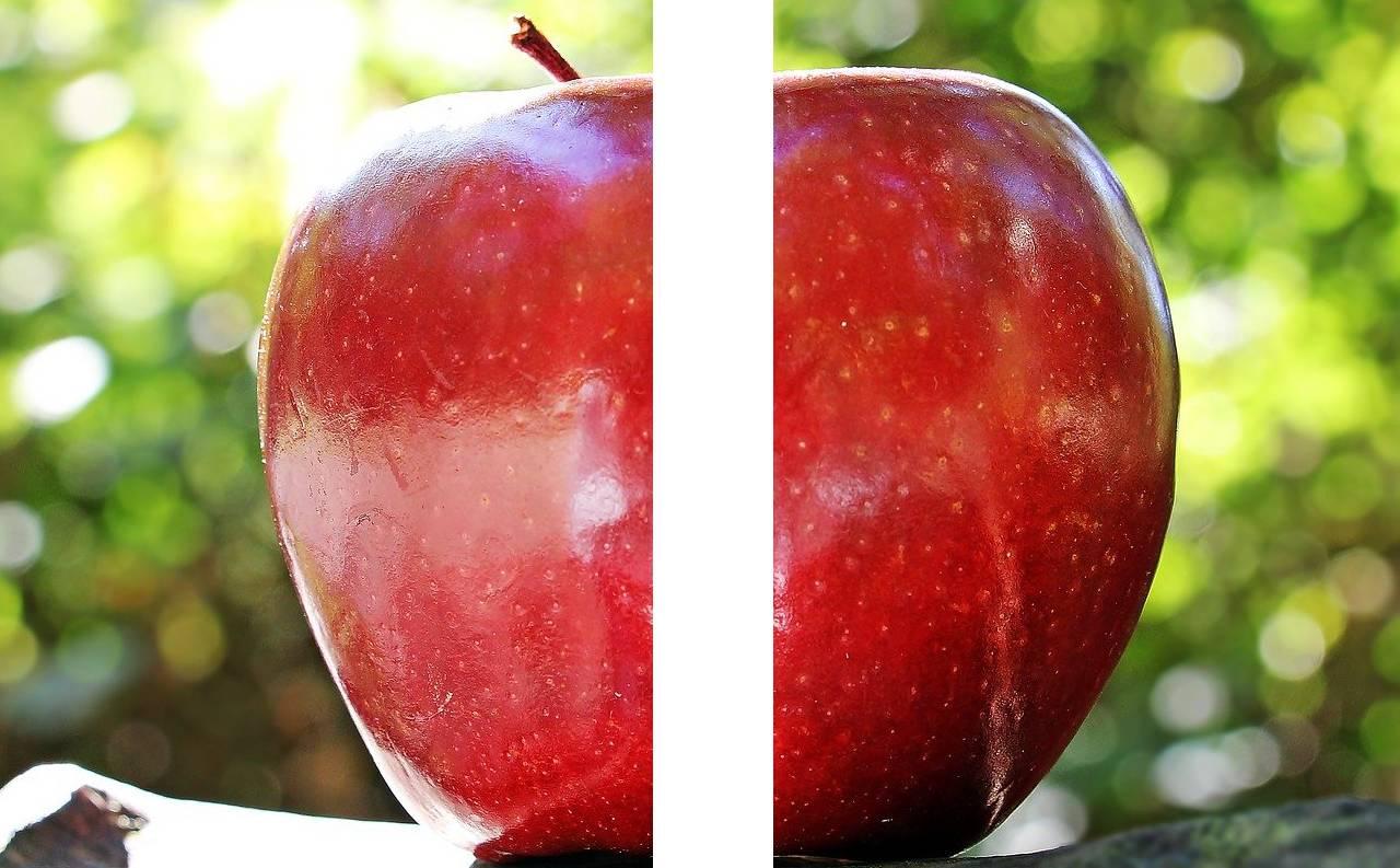świat na dwa jabłko czyli podzielony